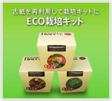ECO栽培キット